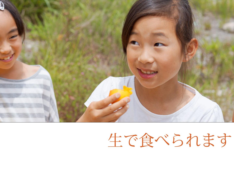 生で食べられる完熟生梅