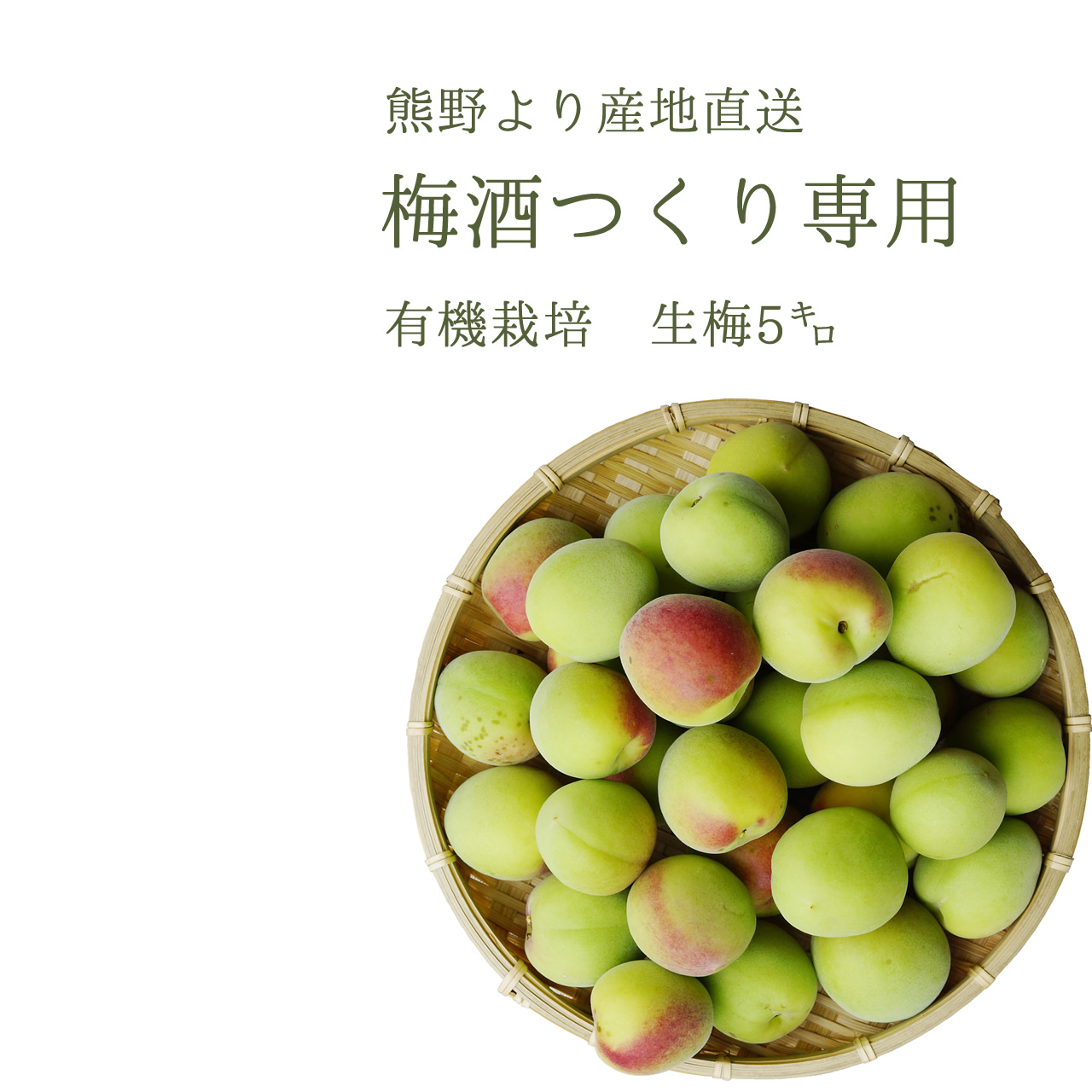 有機生梅,梅酒作り専用の生梅