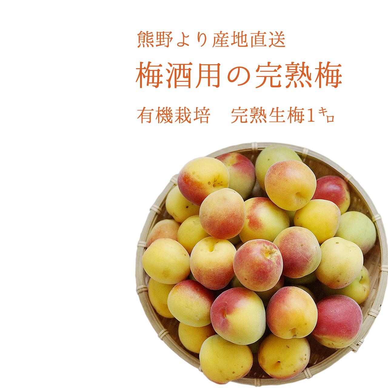 有機JAS認証の梅酒つくり専用の生梅
