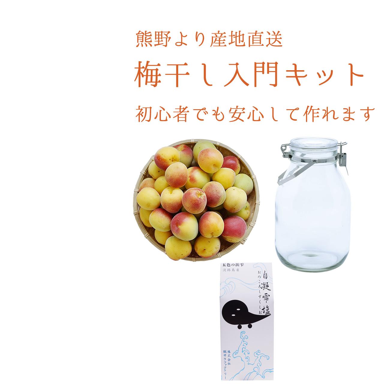 有機JAS認証の梅シロップ用の生梅