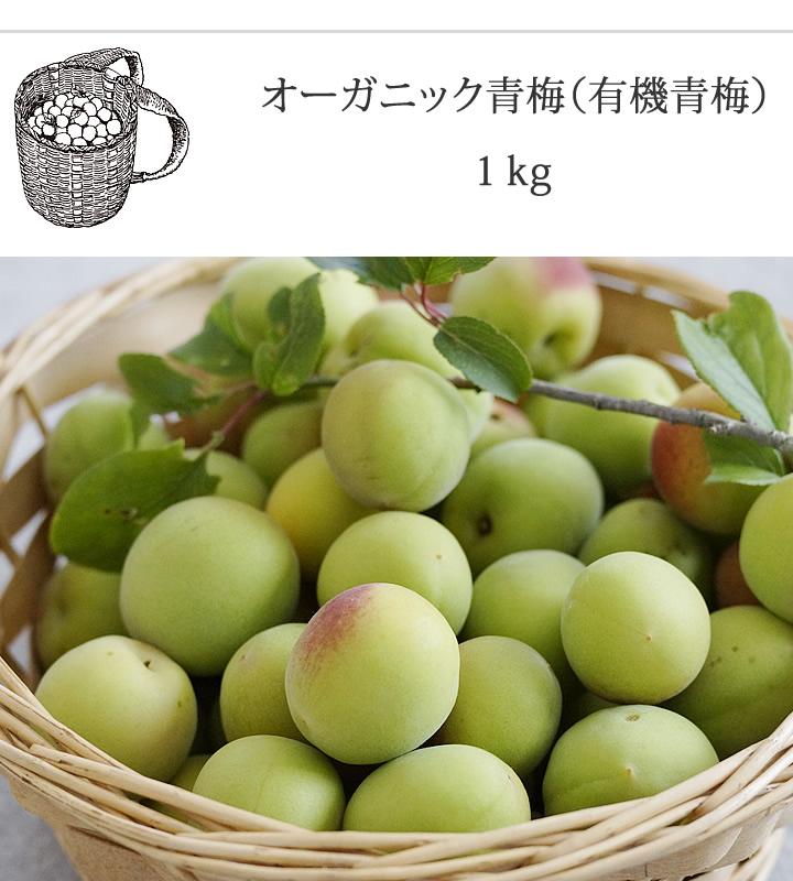 オーガニック青梅(有機青梅)1kg