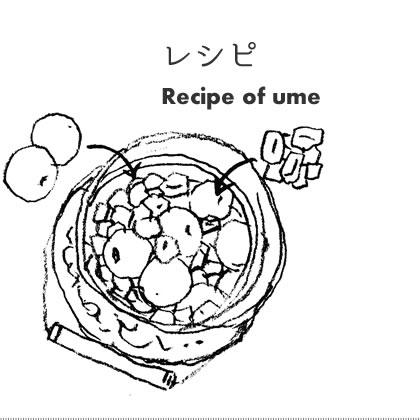 梅を使った料理レシピ