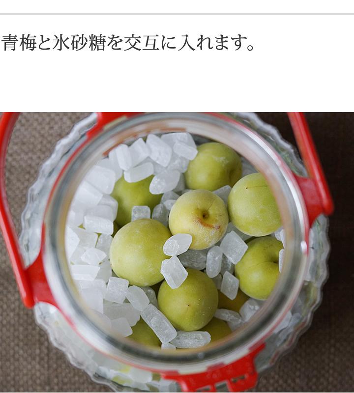 青梅と氷砂糖を交互に入れます。